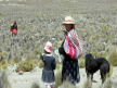 El porcentaje rural de pobres en el Perú llega a 27%.