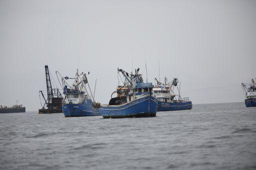 Imarpe. Ha realizado diversas prospecciones en el triángulo marítimo ganado por el Perú para determinar qué recursos abundan más allí.