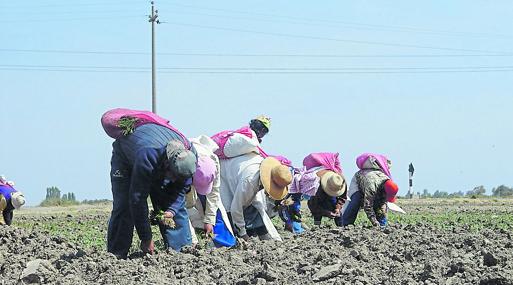 Terrenos están cambiando de zonficación agrícola a residencial.