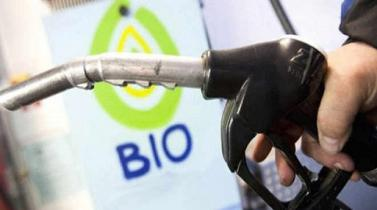Fabricantes de biodiésel de Estados Unidos denuncian dumping de Argentina