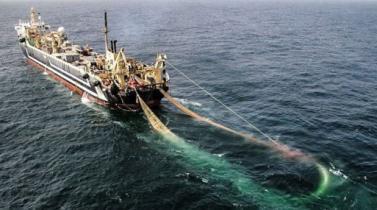 El Brexit sumerge a los pescadores de la Unión Europea en aguas turbulentas