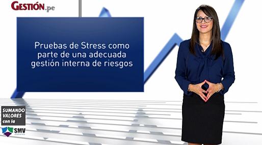 Pruebas de Stress como parte de una adecuada gestión interna de riesgos