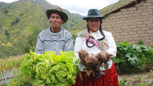 PERÚ: INEI: 264000 peruanos salieron de la pobreza en el 2016