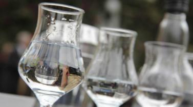 Pisco: Prevén producir 2 millones de litros los próximos tres años