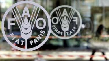 FAO y Mercosur acuerdan impulsar acciones para erradicar hambre en la región