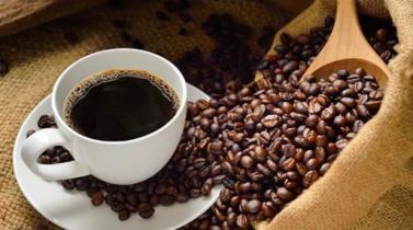 Sierra y Selva Exportadora repartirá 10,000 tazas de café en el Parque Kennedy