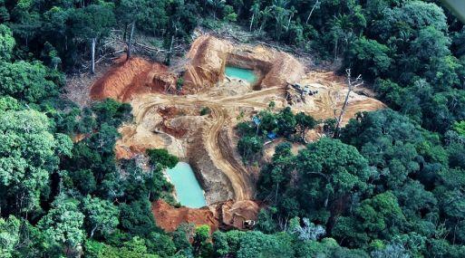 Perú perdió 164,662 hectáreas de bosques húmedos amazónicos por deforestación